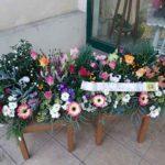 fleuriste à Lubersac